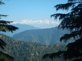 Snow Peaks from Lal Tibba